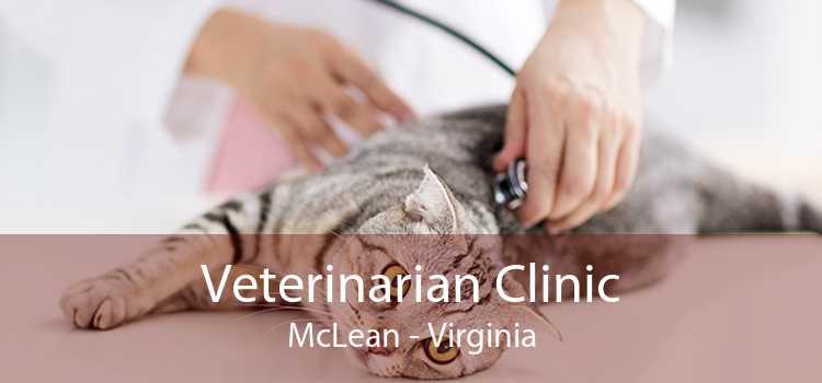 Veterinarian Clinic McLean - Virginia
